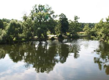 Коттеджный поселок Битягово